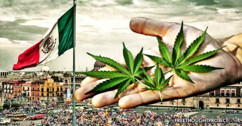 Will Mexico legalize recreational cannabis?
