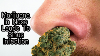 Man Finds 18-Year Old Marijuana In Nose