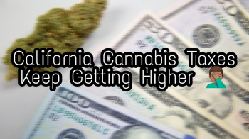 California's Cannabis Taxes Are Getting Even Higher