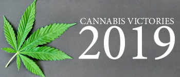 A Cannabis Year in Review