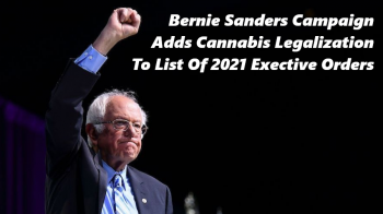 Bernie Sanders Campaign Adds Cannabis Legalization To List Of 2021 Executive Orders