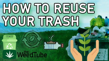 19 (but really way more) Ways You Can Reuse Trash! | Canna4Climate