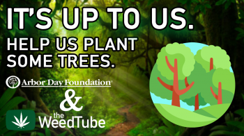 WeedTube's Arbor Day Fundraiser and More Actionable Climate Change Items!