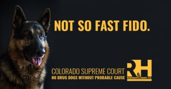 Narcotics Dogs Losing Their Jobs
