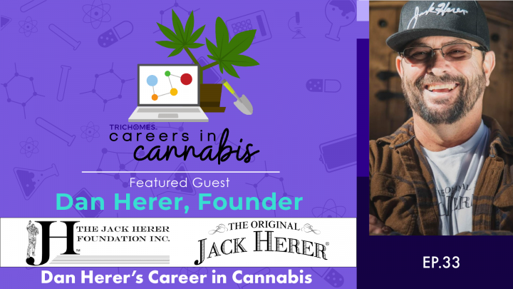 Dan Herer's Career in Cannabis - Careers in Cannabis with Dan Herer of The Jack Herer Foundation