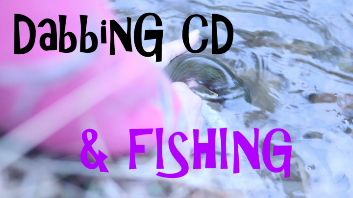 Dabbing Cherry Diesel and fly fishing