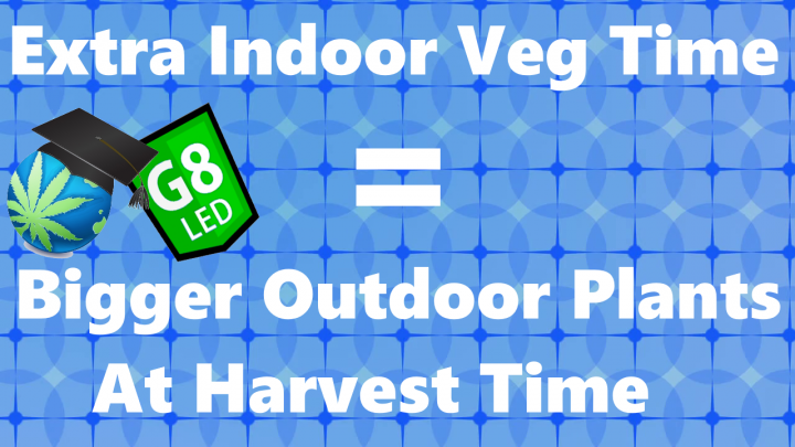 When To Start Outdoor Plants Inside & Move Them OUT + G8 'Versus' Journal