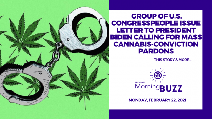 Group of U.S. Congressmen Issue Letter to President Biden Calling For Mass Cannabis Pardons