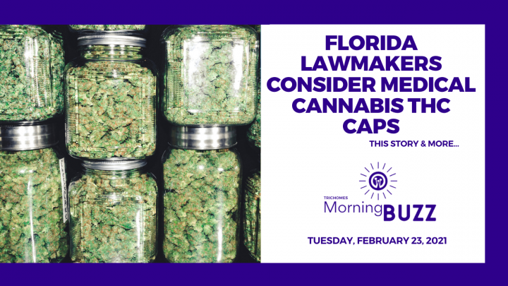 Florida Lawmakers Consider Medical Cannabis THC Caps | TRICHOMES Morning Buzz