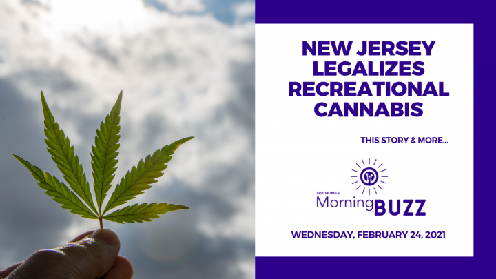 New Jersey Legalizes Recreational Cannabis | TRICHOMES Morning Buzz