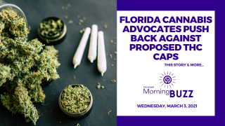 Florida Cannabis Advocates Push Back Against Proposed THC Caps | TRICHOMES Morning Buzz