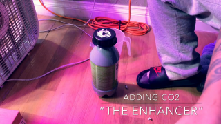 """The Grow 420 Diaries - Adding CO2 Using """"The Enhancer"""" By TNB Naturals #tnb"""