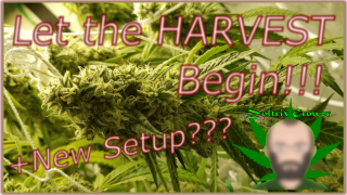 Let the Harvest Begin! | New Setup?! | Mars Hydro Grow Journal SP and TS Series #GROWYOUROWN