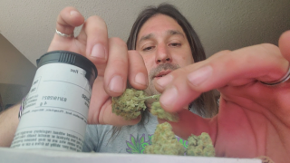 Dan's 420 Chronicles - Lost Cause Weed / Flower Review [Live] in Pueblo 3/19/21