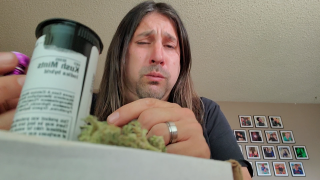Dan's 420 Chronicles - Kush Mints Weed / Flower Review [Live] in Pueblo 3/26/21