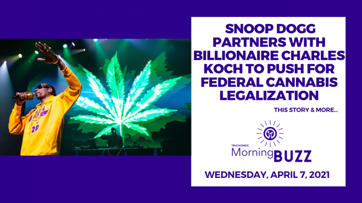Snoop Dogg Partners with Billionaire Charles Koch to Push for Federal Cannabis Legalization