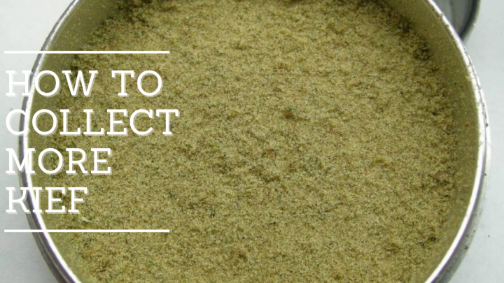 How to Collect more Kief from Grinder