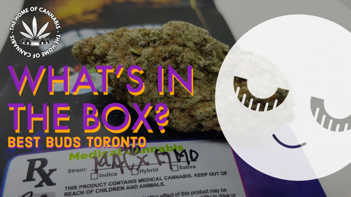 New Craft Flower? (What's In The Box: Best Buds Toronto Unbox)