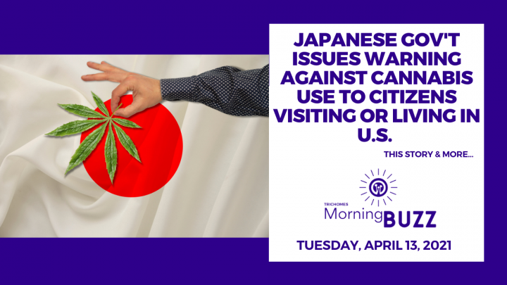 Japanese Gov't Issues Warning Against Cannabis Use to Citizens Visiting or Living in U.S.