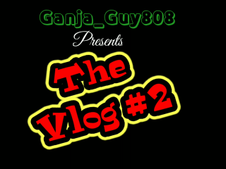 the vlog  #2