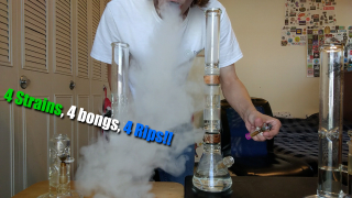 4 Strains, 4 Bongs, 4 Massive Rips!!
