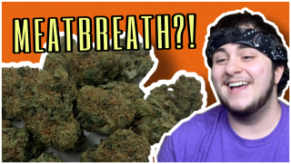 IVE GOT MEATBREATH... // wake n bake