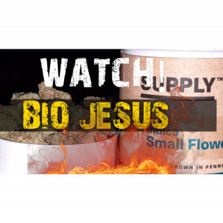 BIO JESUS (SUPPLY) ONE HIT A DAY KEEPS THE DOCTOR AWAY!