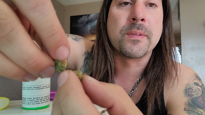 Dan's 420 Chronicles - Blue Hash Plant Weed / Flower Review [Live] in Pueblo 4/23/21
