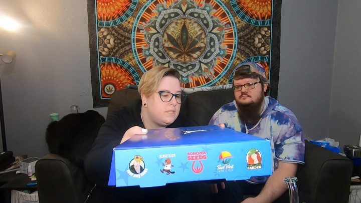 T•H•D: Unboxing the Rocketseeds Mystery Box