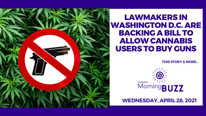 Lawmakers in Washington D.C. Are Backing a Bill to Allow Cannabis Users to Buy Guns | Morning Buzz