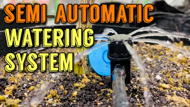 Finishing Up Veg Weeks 9-10 And Installing Semi-Automatic Watering System