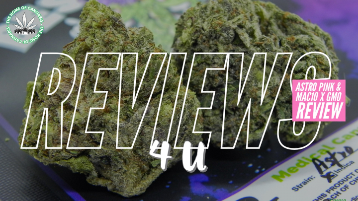 ASTRO PINK & MAC x GMO Review