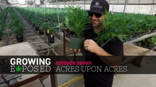 GROWING EXPOSED  S1 EP7 - Acres Upon Acres