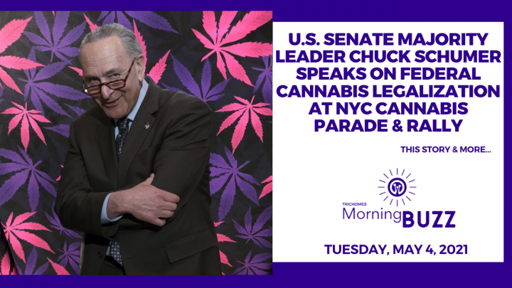 Chuck Schumer Speaks on Federal Cannabis Legalization at NYC Cannabis Parade & Rally | Morning Buzz