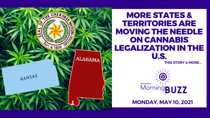 More States & Territories are Moving the Needle on Cannabis Legalization in the U.S.   Morning Buzz