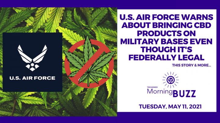 U.S. Air Force Warns About Bringing CBD Products on Military Bases Even Though It's Federally Legal