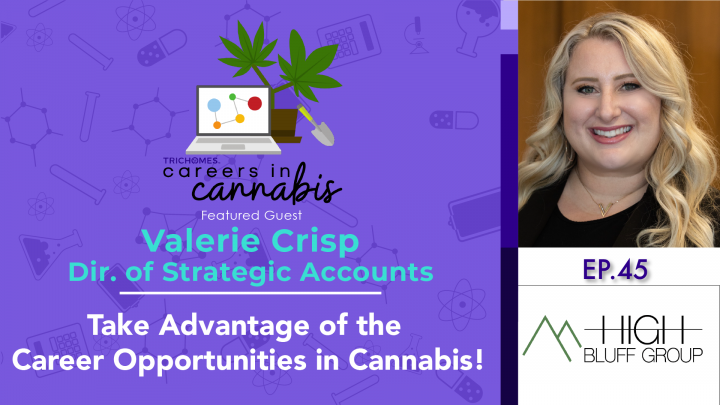 Take Advantage of Career Opportunities in Cannabis! - Interview: Valerie Crisp - High Bluff Group
