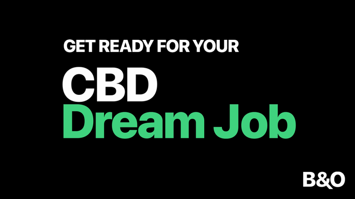 Are You Our CBD Brand Ambassador? Join the Bloom&Oil Team