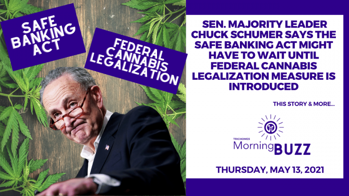 Chuck Schumer Says SAFE Banking Act May Have to Wait for Federal Cannabis Legalization is Introduced
