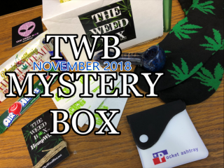 TWB Mystery Box November 2018 Unboxing & Review