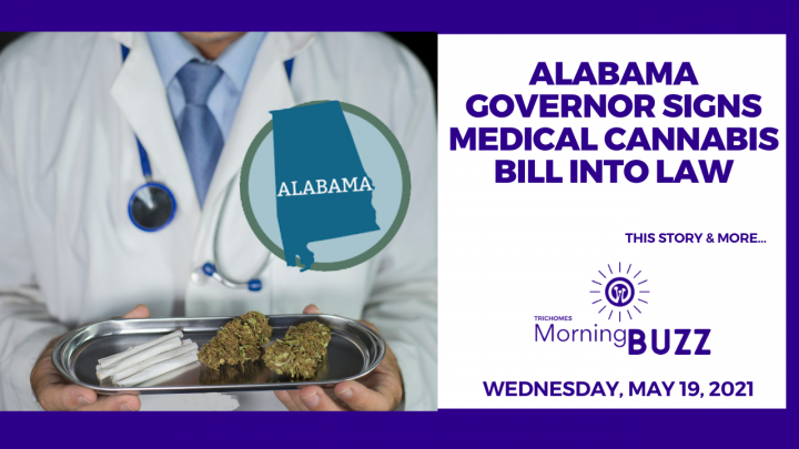 Alabama Governor Signs Medical Cannabis Bill Into Law | TRICHOMES Morning Buzz
