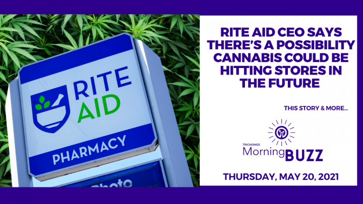 Rite Aid CEO Says Cannabis Could Be Hitting Stores in the Future  | TRICHOMES Morning Buzz