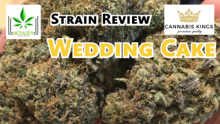 Wedding Cake (AAAA+) from Cannabis Kings - Strain Review