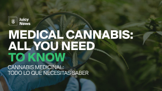 #JuicyNews | MEDICINAL CANNABIS: All you need to know