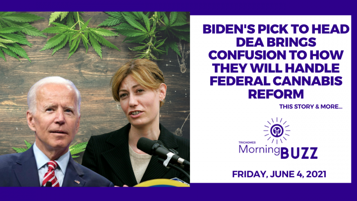 Biden's Pick to Head DEA Brings Confusion to How They Will Handle Federal Cannabis Reform