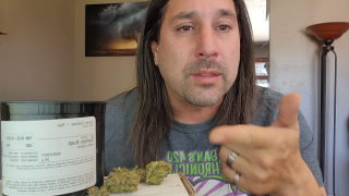 Dan's 420 Chronicles - Durban Kush Weed / Flower Review [Live] in Pueblo 6/4/21