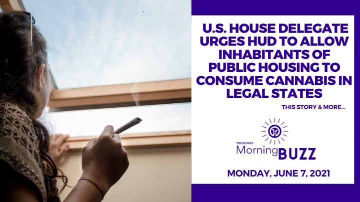 U.S. House Delegate Urges HUD to Allow Users of Public Housing to Consume Cannabis in Legal States