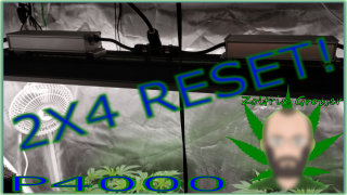 2X4 Reset with they Viparspectra P4000 | Growing Weed Perpetually