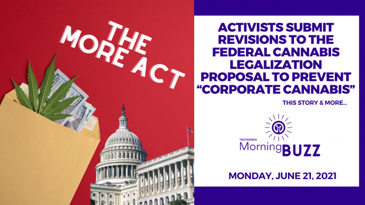 """Activists Submit Revisions to Federal Cannabis Legalization Measure to Prevent """"Corporate Cannabis"""""""