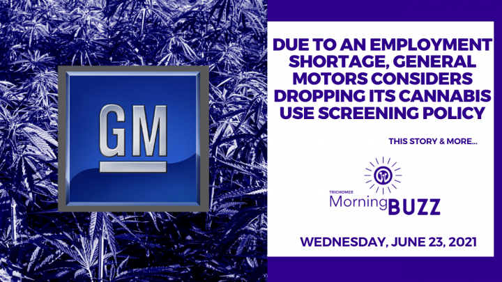 Due to An Employment Shortage, General Motors Considers Dropping its Cannabis Use Screening Policy
